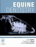Equine Dentistry