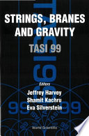 Strings  Branes  and Gravity Book