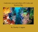 Underwater Caves and Critters of Pt  Lobos and Monterey Bay