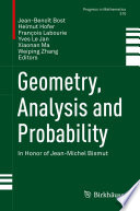 Geometry  Analysis and Probability Book