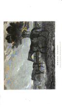 Side 146