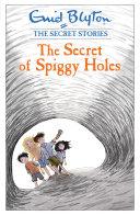 Pdf The Secret of Spiggy Holes