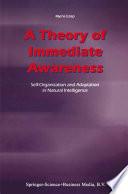 A Theory of Immediate Awareness