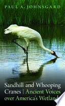 Sandhill and Whooping Cranes