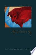 Melancholia's Dog
