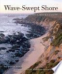 Wave Swept Shore