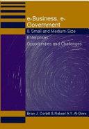 E business  E government   Small and Medium size Enterprises