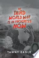 The Third World War Is in Progress Now