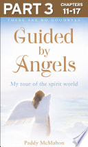 Guided By Angels  Part 3 of 3  There Are No Goodbyes  My Tour of the Spirit World Book