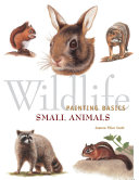 Wildlife Painting Basics   Small Animals