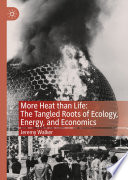 More Heat than Life  The Tangled Roots of Ecology  Energy  and Economics
