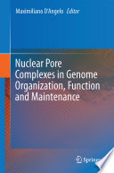 Nuclear Pore Complexes in Genome Organization  Function and Maintenance
