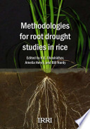 Methodologies for Root Drought Studies in Rice