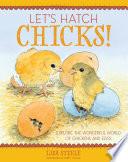 Let s Hatch Chicks