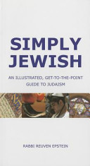 Simply Jewish  An Illustrated  Get To The Point Guide to Judaism