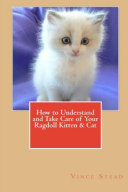 How to Understand and Take Care of Your Ragdoll Kitten   Cat