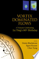 Vortex Dominated Flows