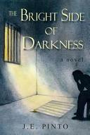 The Bright Side of Darkness Book PDF