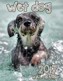 Wet Dog 2017 Wall Calendar