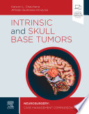 Intrinsic and Skull Base Tumors - E-Book