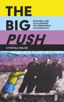 The Big Push Pdf/ePub eBook