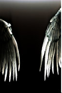 The Angels of Resistance (6 X 9) Version