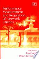 Performance Measurement and Regulation of Network Utilities