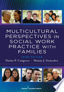 Multicultural Perspectives In Social Work Practice With Families 3rd Edition Book PDF