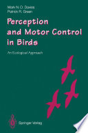 Perception and Motor Control in Birds