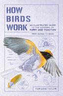 How Birds Work Pdf/ePub eBook