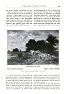 Pagina 597