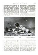 Pagina 605