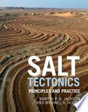 Salt Tectonics Book