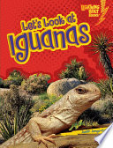 Let s Look at Iguanas