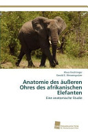 Anatomie des äußeren Ohres des afrikanischen Elefanten