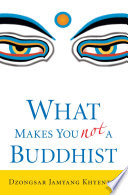 What Makes You Not a Buddhist image