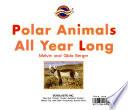 Polar animals all year long