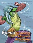 Drawing Human Anatomy with Force