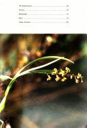 Machu Picchu Orchids Book