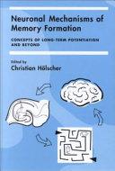 Neuronal Mechanisms of Memory Formation
