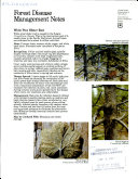 White Pine Blister Rust ebook