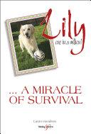 Lily: one in a million Pdf/ePub eBook