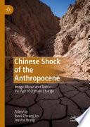 Chinese Shock of the Anthropocene
