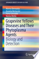 Grapevine Yellows Diseases and Their Phytoplasma Agents