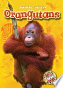 Orangutans Book