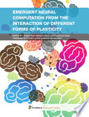 Emergent neural computation from the interaction of different forms of plasticity