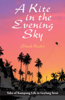 Kite in An Evening Sky Pdf/ePub eBook