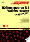 Наглядный самоучитель 1С: Предприятие 8.1. Управление торговлей (+ видеокурс)