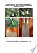 Efficient in vitro callus induction protocol for three endemic medicinal plants  Cyclea peltata  Naegamia alata and Kaempferia galangal Linn   in Kerala Book