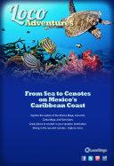 Loco Adventures   From Sea to Cenotes on Mexico s Caribbean Coast